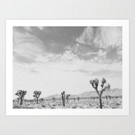 JOSHUA TREE III / California Art Print