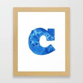 100 Days of Hybrid Type: C Framed Art Print