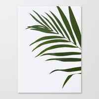 fern Canvas Prints featuring Fern by Tamsin Lucie