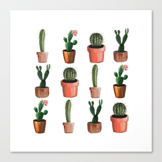 Various Cacti Canvas Print