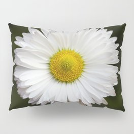 Flower of my Eye- Photo of a daisy Pillow Sham