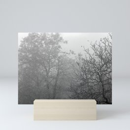 Black and white autumnal naked trees surrounded by fog Mini Art Print