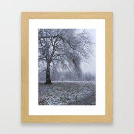 Houghton Hall Park Framed Art Print