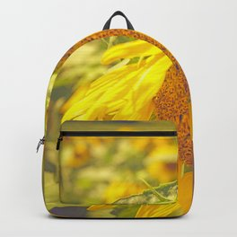 Summer Field Backpack
