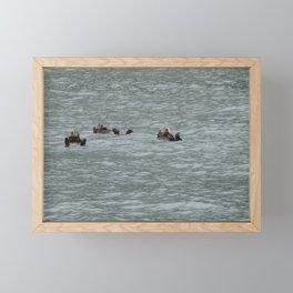 USA - ALASKA - Three otters Framed Mini Art Print