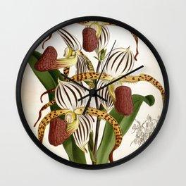 Vintage Plum Lindenia Orchids Wall Clock