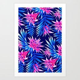 Aechmea Fasciata - Mid Blue/Pink Art Print