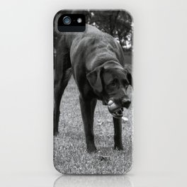 Play Dog iPhone Case