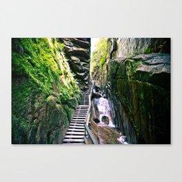 Flume Gorge Canvas Print