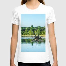 Driftwood Reflection T-shirt