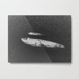 Found Fish Metal Print