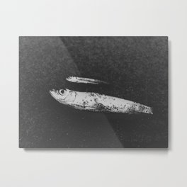 Found Fish Metal Print