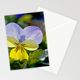Pansy Perfection Stationery Cards