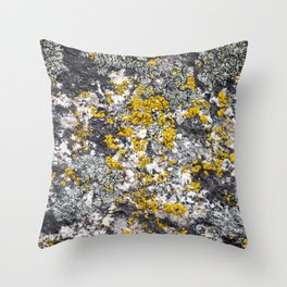 Colored Rock Throw Pillow