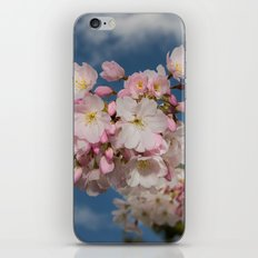 Silicon Valley Cherry Blossoms iPhone Skin