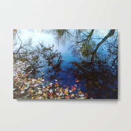Trees reflected by water. Autumn, fall, maple leaves, blue Metal Print