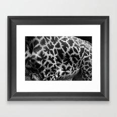 Giraffe Skin Framed Art Print