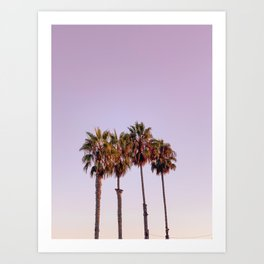 Four Palms at Sunrise, Carlsbad, Ca Art Print