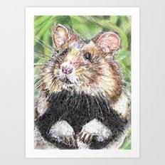 Did Someone Say Nuts Art Print