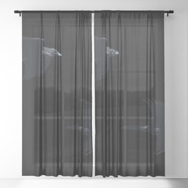Thought and Memory Norse Pagan Symbology Sheer Curtain