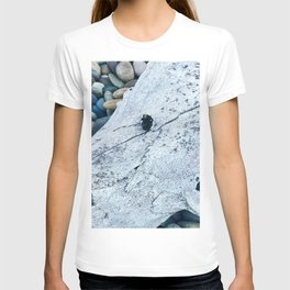 Dead Bee and Skull T-shirt