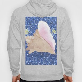 Conch Republic Flag Painting Hoody