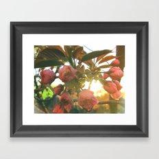 Little Darlin' Framed Art Print