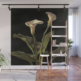 White Calla Lilies On A Black Background Wall Mural