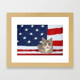 Patriotic Tabby Kitten Framed Art Print
