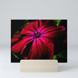 Purple Wild Flower Mini Art Print