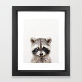 Baby Raccoon, Baby Animals Art Print By Synplus Framed Art Print