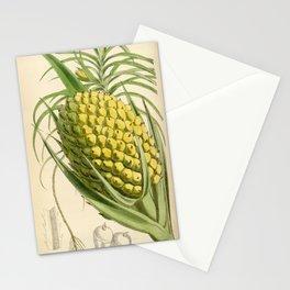 Flower 6347 pandanus unguifer1 Stationery Cards