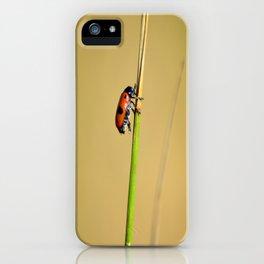 Sentinelle iPhone Case
