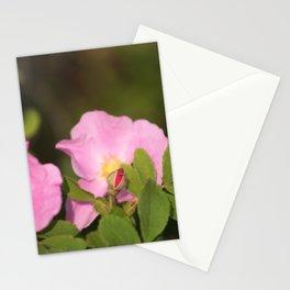 Wild Prairie rose Stationery Cards