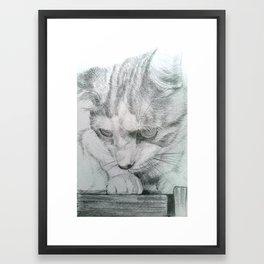 Fergus Framed Art Print