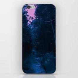 0413 iPhone Skin