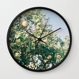Citrus tree | Cape town analog photo print | Travel photography Art Print Wall Clock