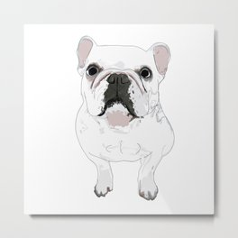 French Bulldog Print Metal Print