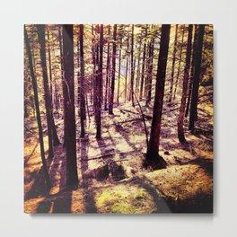 Western Woods Metal Print