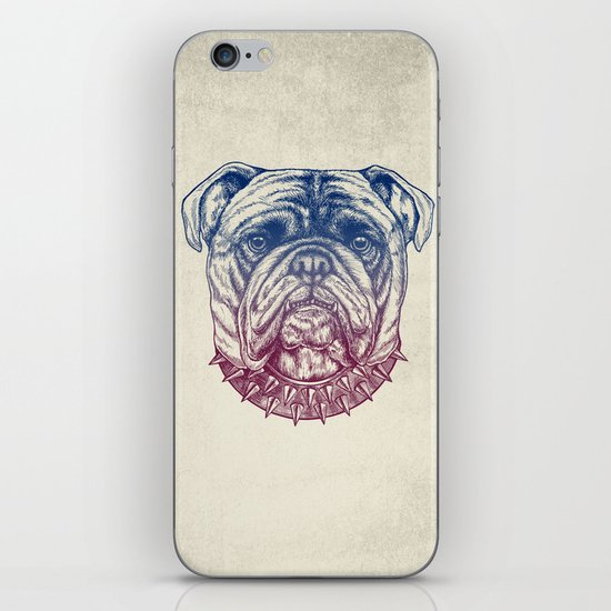 Gritty Bulldog iPhone & iPod Skin