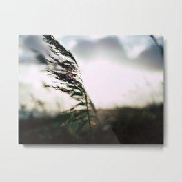 Shape in the sun Metal Print
