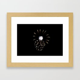 Fireworks 8 Framed Art Print