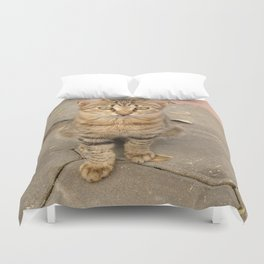 Cute Tabby Street Cat Duvet Cover