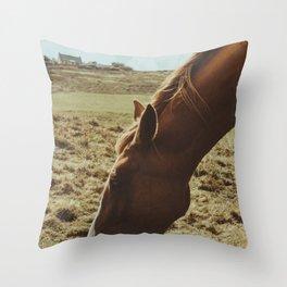 Horsey! Throw Pillow