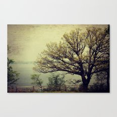 Tree with a View Canvas Print