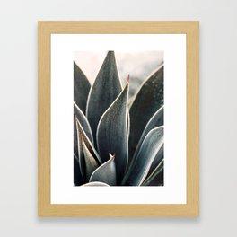 Dewdrop Framed Art Print