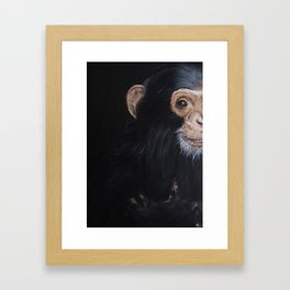 Le Chimpanzé Framed Art Print