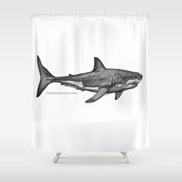 Carcharodon carcharias Shower Curtain