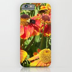 Sweet as a Bee and Daisies iPhone 6s Slim Case