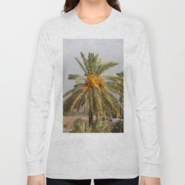 Date Palm Tree in Magiddo, Israel Long Sleeve T-shirt